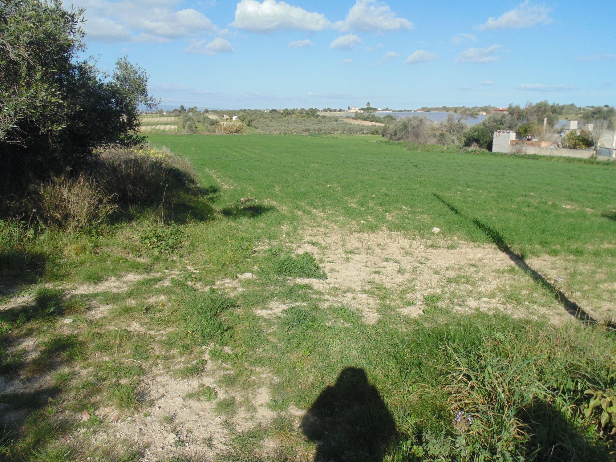 Terreno agricolo di circa 14500 mq con fabbricato rurale di 96 mq circa, con accesso diretto dalla s  ...