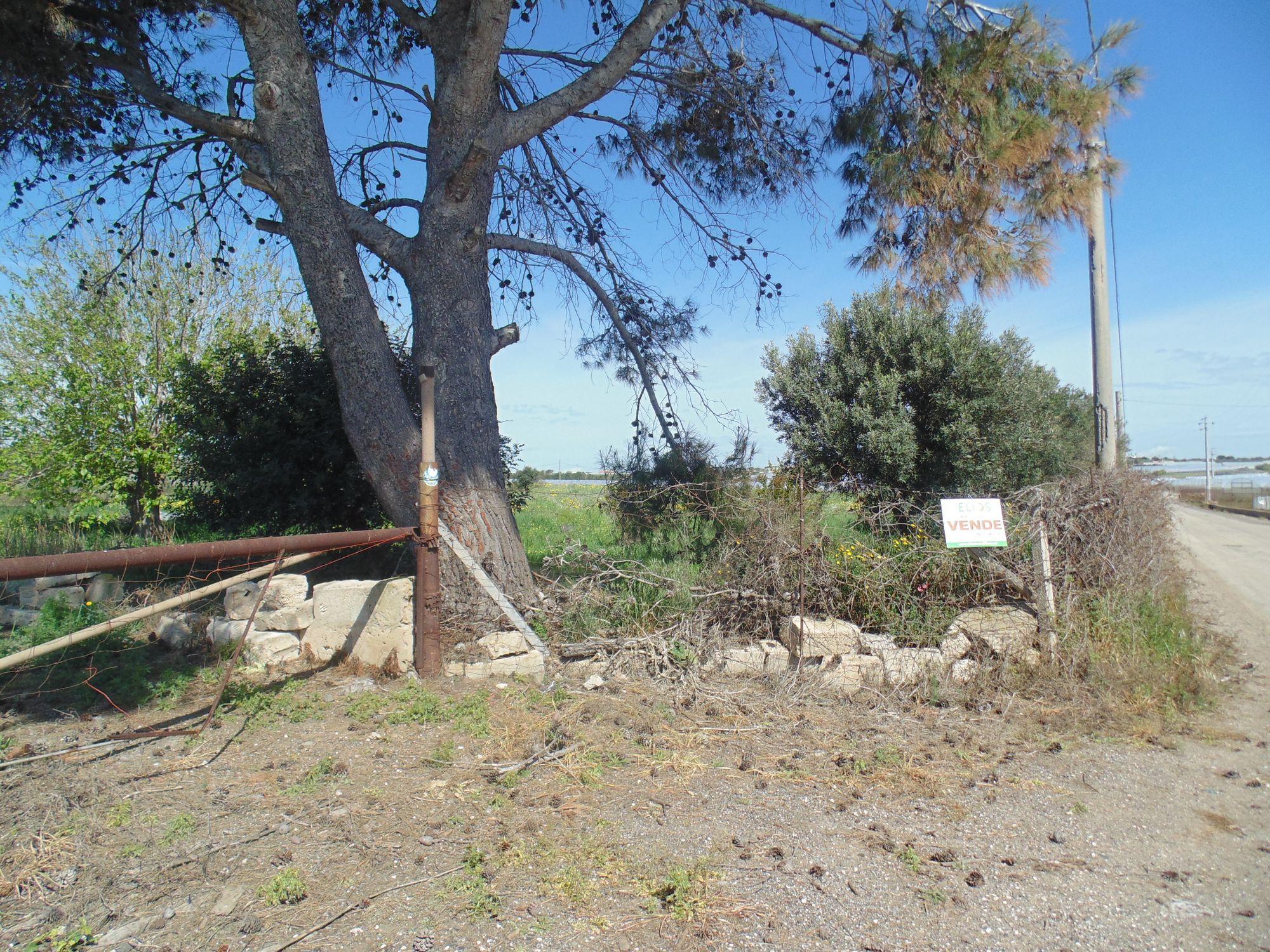 Terreno agricolo di circa due ettari e mezzo con fabbricato rurale di circa 80 mq e pozzo trivellato.   ...