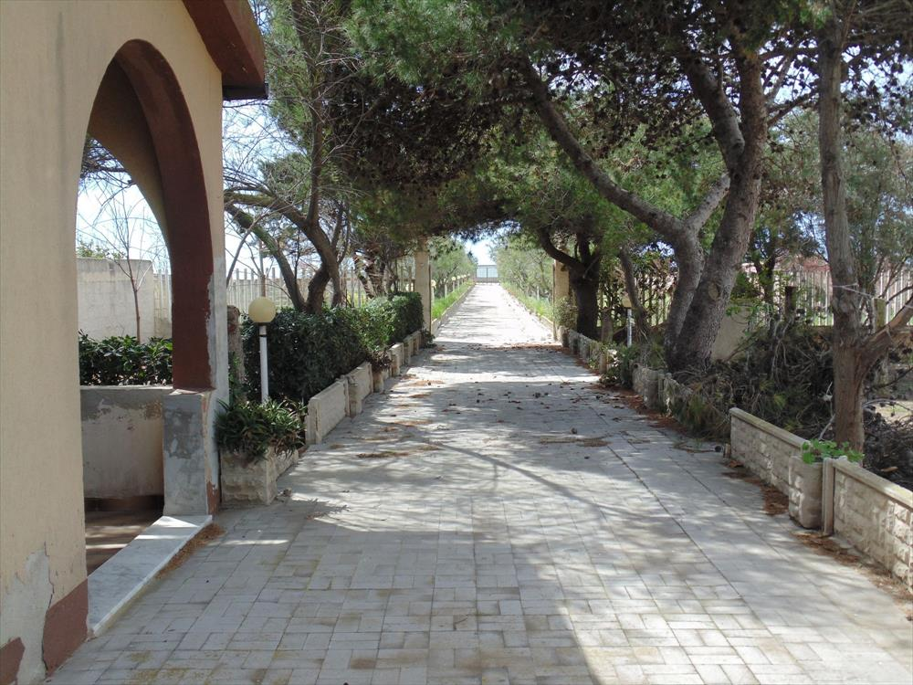 A meno di 100 m dalla spiaggia, alla quale si accede dal vialetto privato, 3 ville in vendita in un contesto molto gradevole e tranquillo  ...
