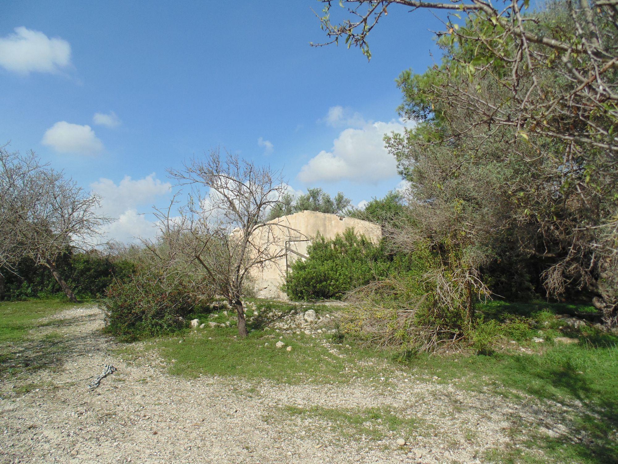 Terreno di oltre 2 ettari, situato nella riserva di Vendicari, coltivato ad uliveto e mandorleto. Presente rustico di circa 40 mq e pozzo.    ...