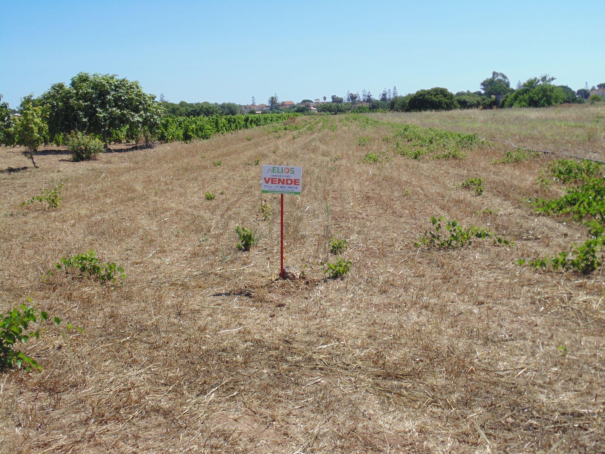 Terreno agricolo di circa 3500 mq. Prezzo trattabile.  ...