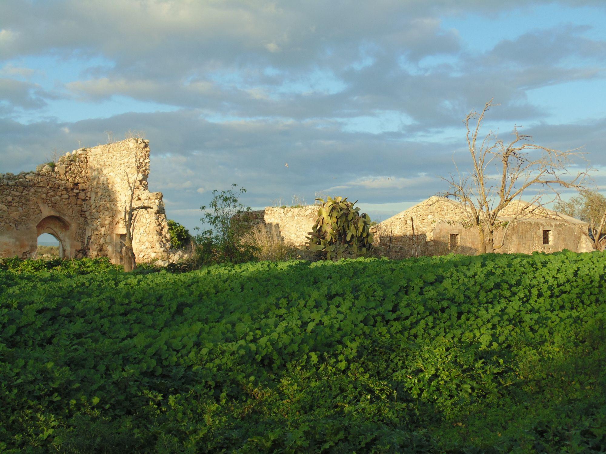 Terreno in c.da Scirbia con caseggiato rurale.  ...